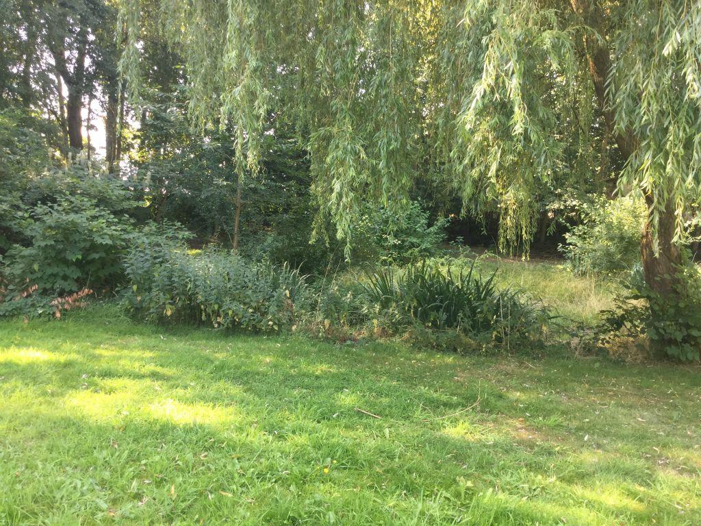 Der Garten - Bild 5